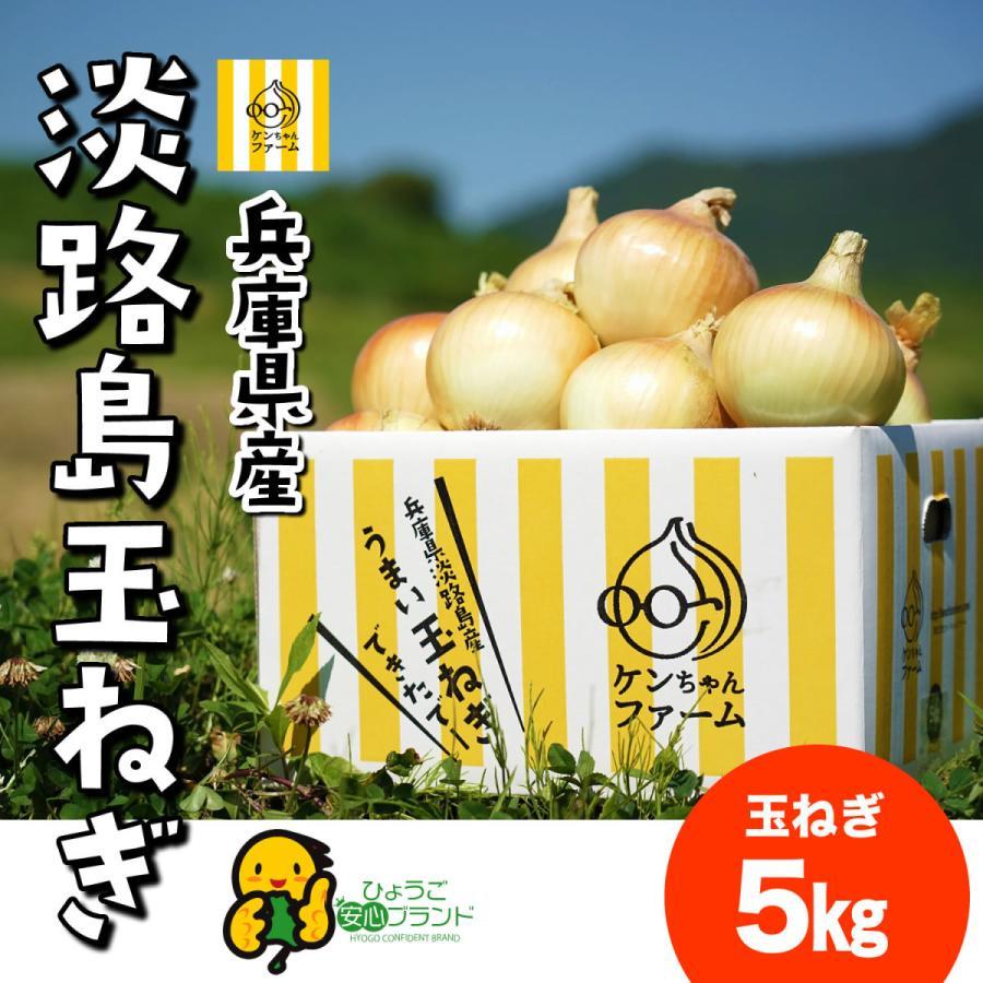 淡路島 玉ねぎ お気に入り たまねぎ 5キロ 特別栽培 送料無料 初売り ひょうご安心ブランド認証