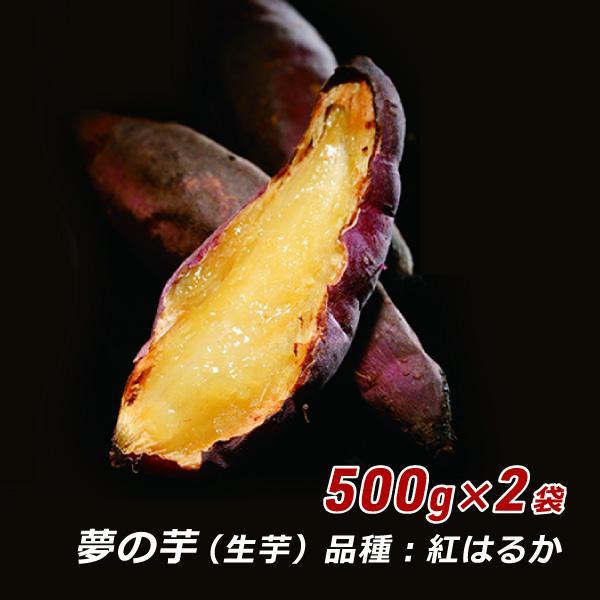 さつまいも 紅はるか 夢の芋 500g 袋詰め×2袋 (1kg) さんわ農夢 香川県 産地直送 サツマイモ 薩摩芋 蜜芋 みつ芋 生芋 熟成芋 送料込 ネプリーグ awajikodawari