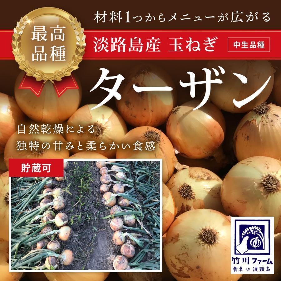 淡路島産玉ねぎ 最高品種 世界の人気ブランド 10キロ ターザン 最安値挑戦