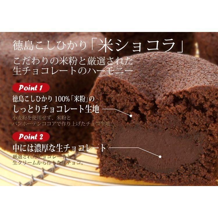 お歳暮 お年賀 ギフト 和菓子 お誕生日プレゼント お供え お菓子 チョコレート 生チョコ 米ショコラ 内祝い お祝い awayatokushima 05