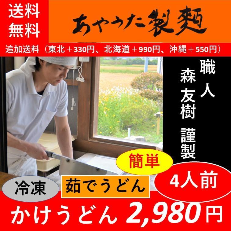 簡単かけうどん5人前【受注製造】【要冷凍】【賞味期限:製造日より30日】 ayauta