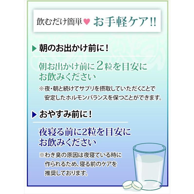 即納 ラポマインサプリメント 3袋(1袋40粒) |az-shop|11