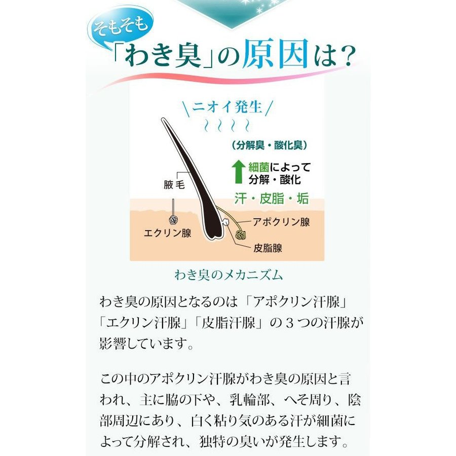 即納 ラポマインサプリメント 3袋(1袋40粒) |az-shop|05