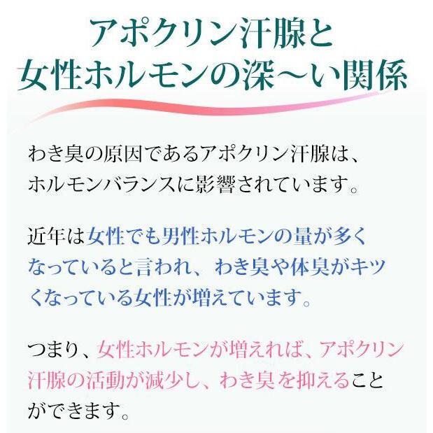 即納 ラポマインサプリメント 3袋(1袋40粒) |az-shop|06