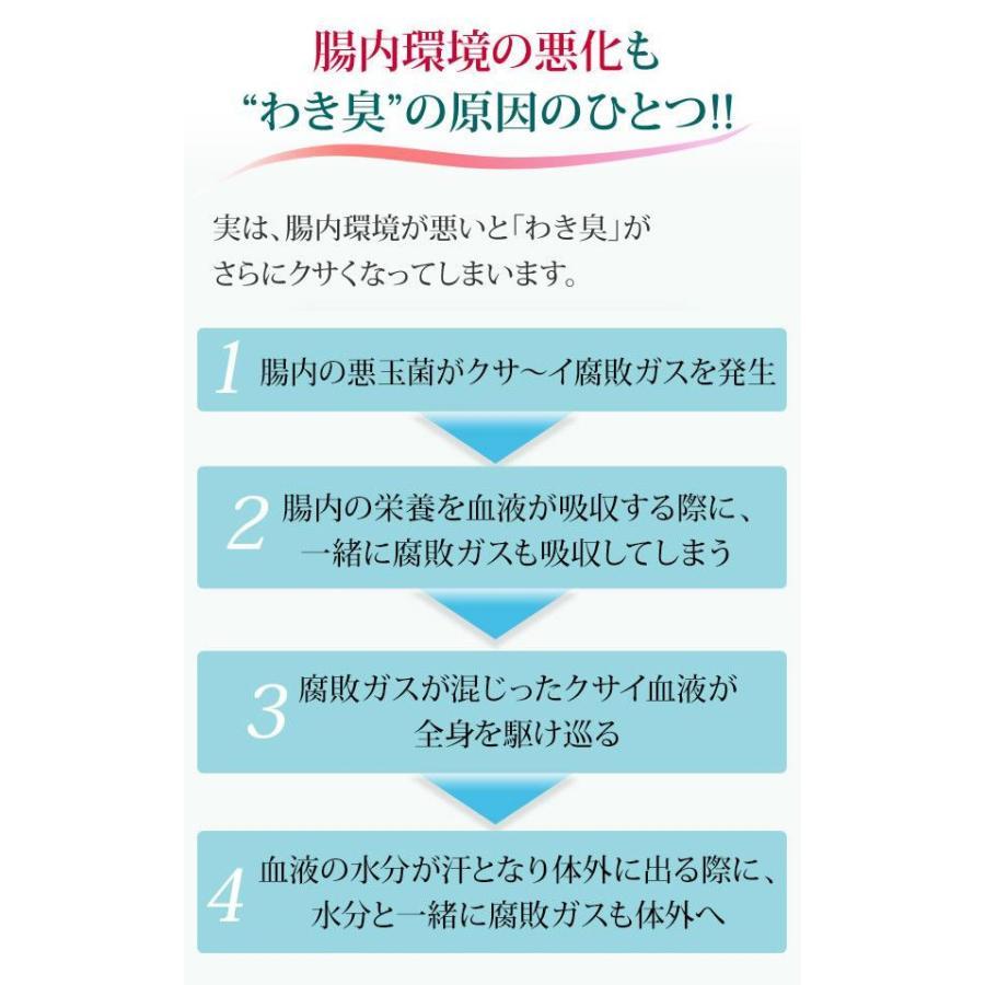 即納 ラポマインサプリメント 3袋(1袋40粒) |az-shop|07