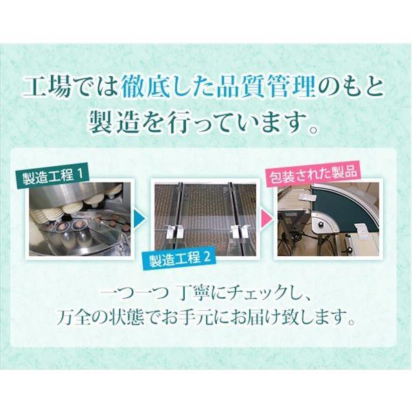 即納 ラポマインサプリメント 3袋(1袋40粒) |az-shop|10