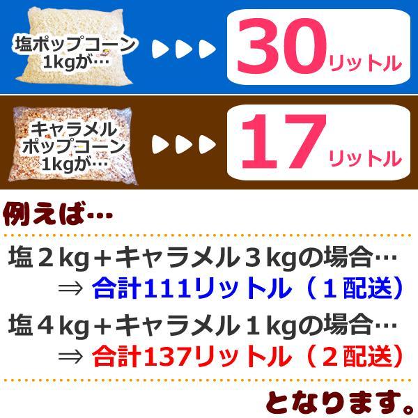 送料無料ポップコーン塩味200人分セット~イベントセット~専用袋付 塩4kg(1kg×4)三角袋(青)モールタイ200セット付|azechi|04