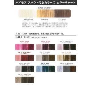 カラー選択 パイモア スペクトラムカラーズ 400g カラートリートメント b-cafe 02