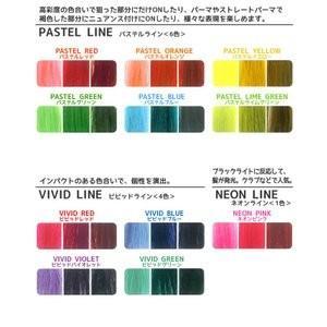 カラー選択 パイモア スペクトラムカラーズ 400g カラートリートメント b-cafe 03
