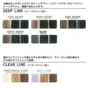 カラー選択 パイモア スペクトラムカラーズ 400g カラートリートメント b-cafe 04