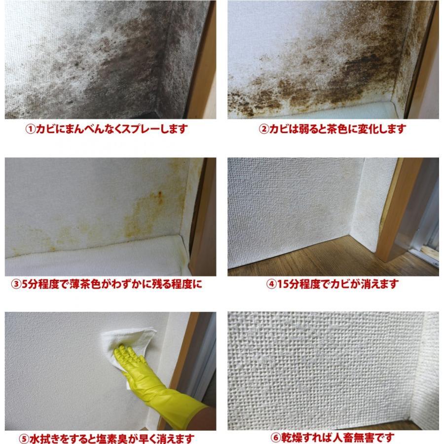 部屋 カビ 除去 家中のカビ掃除 場所ごとにきれいサッパリ除去する方法は?