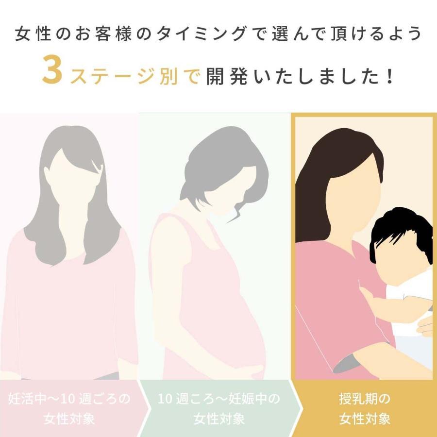 授乳期 専用サプリ plusus(プラサス)for mom  単品 120粒(30日分)サプリ 乳酸菌 ラズベリーリーフ babylife-labo 02