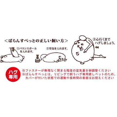 ばらんすてでぃ(ベア)|balancepets|02
