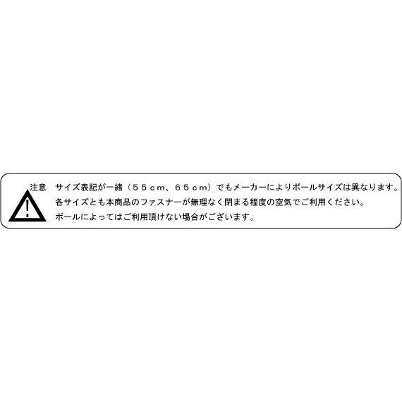 ばらんすペン(ペンギン)|balancepets|05