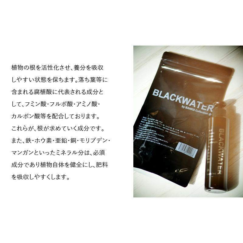 肥料、活力剤 コンボセット THE COMPOST ザ コンポスト 3L、BLACKWATER ブラックウォーター 200cc|bankscollection|11