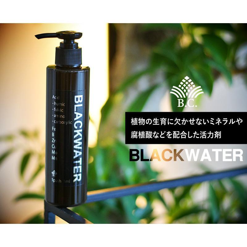 肥料、活力剤 コンボセット THE COMPOST ザ コンポスト 3L、BLACKWATER ブラックウォーター 200cc|bankscollection|13