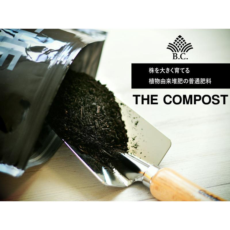 肥料、活力剤 コンボセット THE COMPOST ザ コンポスト 3L、BLACKWATER ブラックウォーター 200cc|bankscollection|07