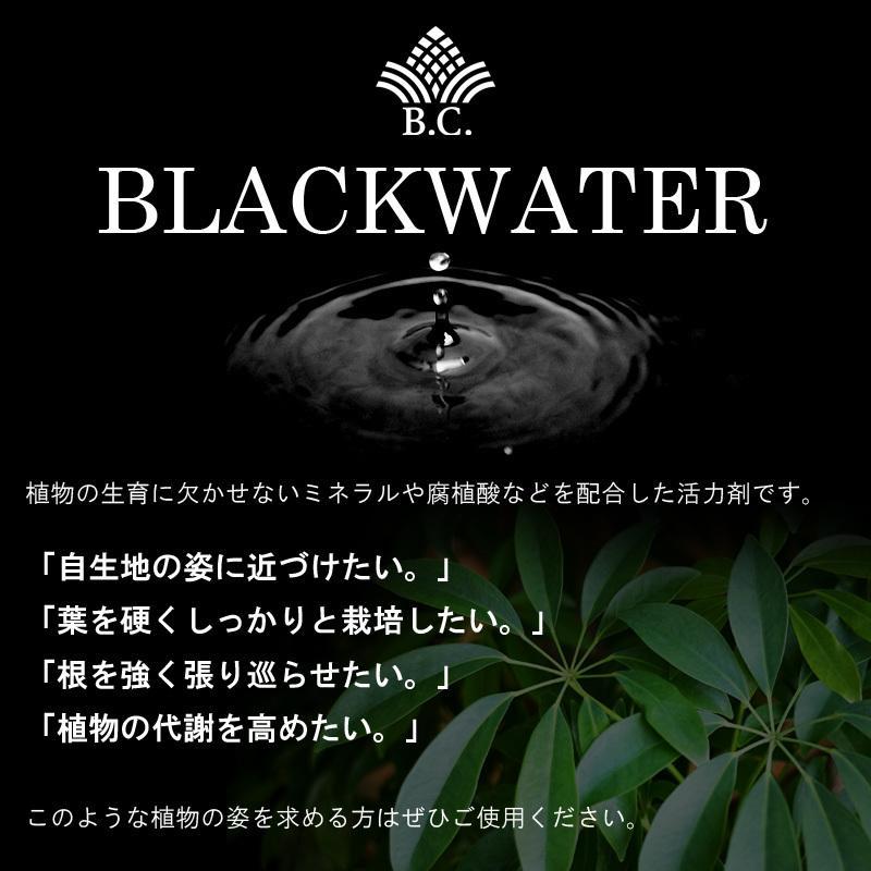 肥料、活力剤 コンボセット THE COMPOST ザ コンポスト 3L、BLACKWATER ブラックウォーター 200cc|bankscollection|10