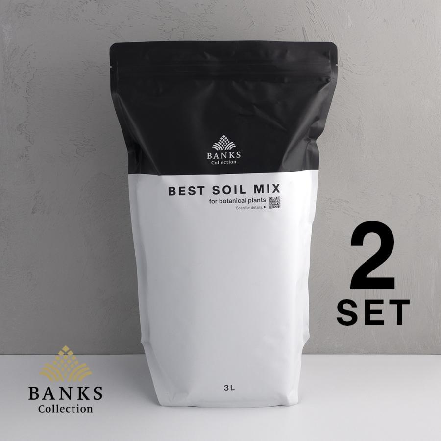観葉植物用培養土  Best Soil Mix 3L 2袋セット ベストソイルミックス 3リットル バンクスコレクション|bankscollection