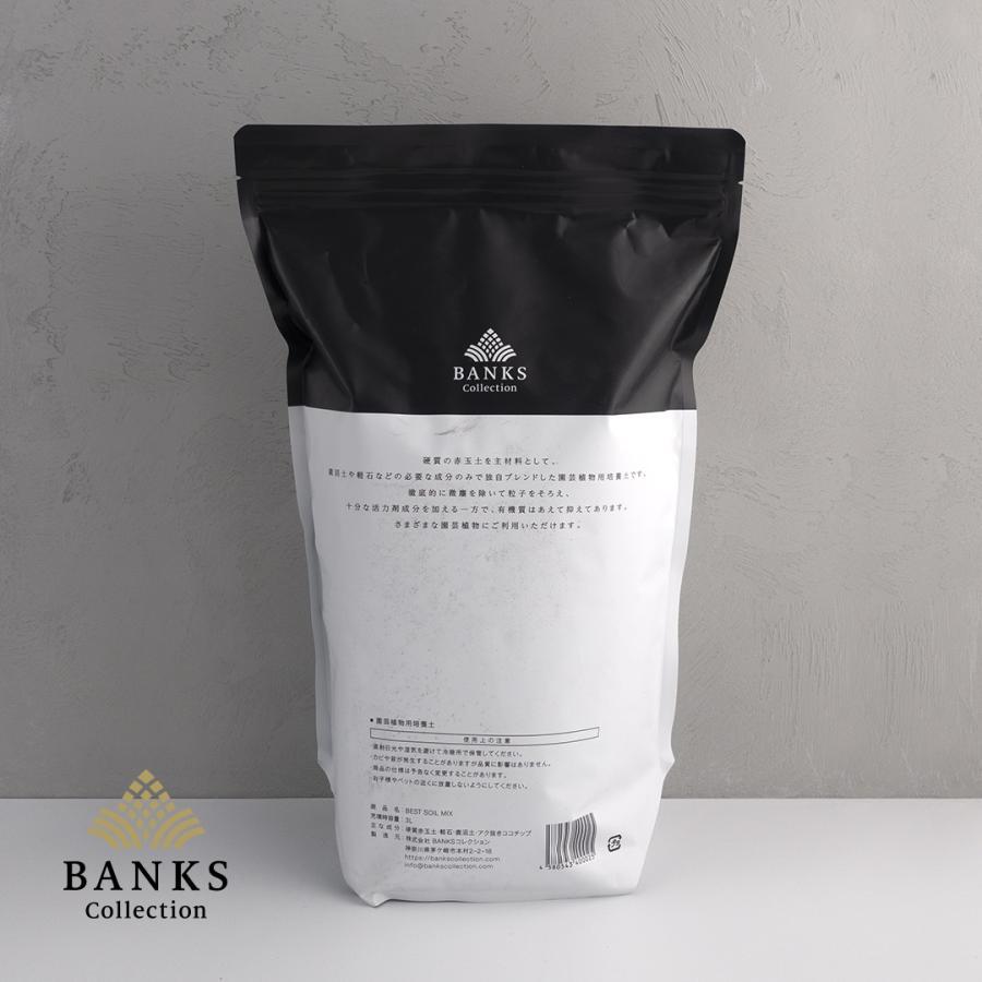 観葉植物用培養土  Best Soil Mix 3L 2袋セット ベストソイルミックス 3リットル バンクスコレクション|bankscollection|02