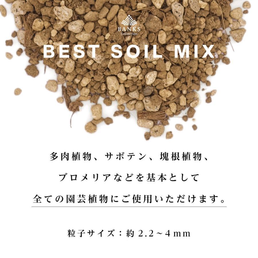 観葉植物用培養土  Best Soil Mix 3L 2袋セット ベストソイルミックス 3リットル バンクスコレクション|bankscollection|03