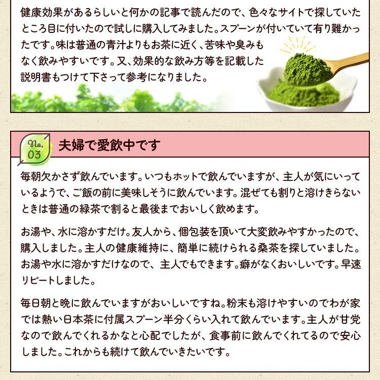 桑の葉茶 粉末 100g 青汁  国産 送料無料 効能 桑茶 パウダー|bansyodo1|14