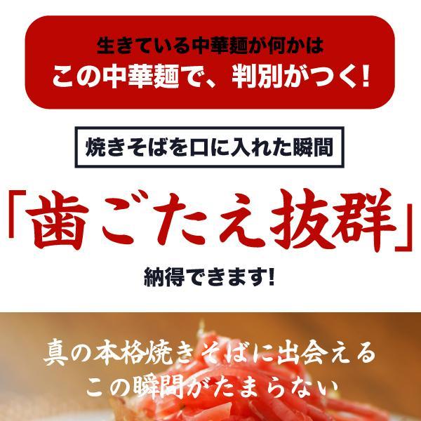 送料無料 3種から選べる 生麺焼きそば 6食 ソース焼きそば 中華風焼きそば 焼きちゃんぽん 得トクセール ポイント消化 食品 お試し お取り寄せ グルメ 特産品|banya|11