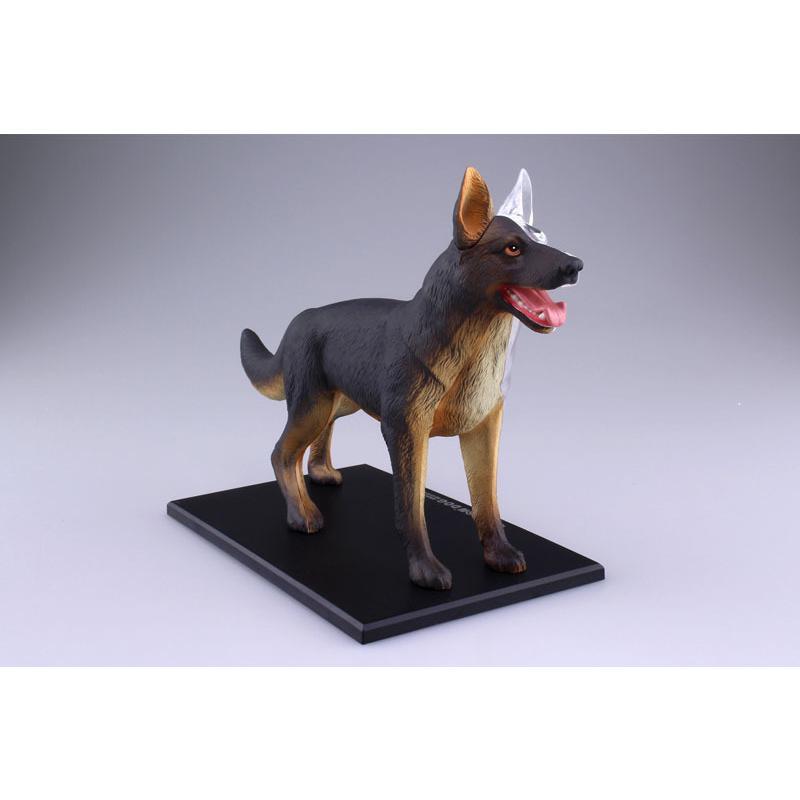 4D VISION 動物解剖モデル 犬解剖モデル【アオシマ 立体パズル】|barchetta|04