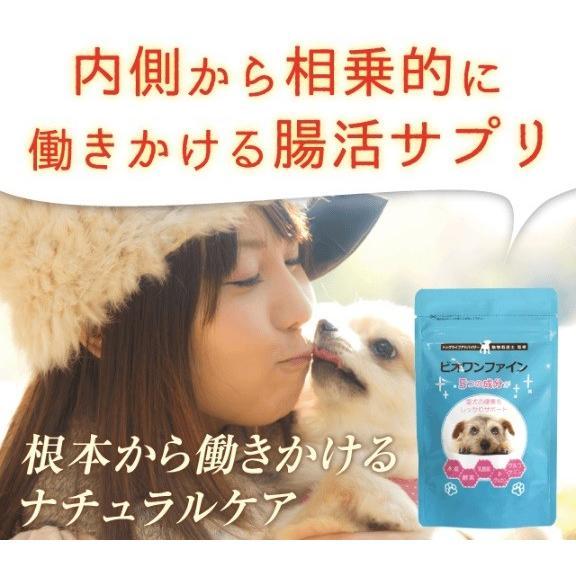 わんちゃんライフ ビオワンファイン 犬 サプリ サプリメント 腸内環境 乳酸菌 酵母 グルコサミン 60粒 30日分|baumkuchen|02