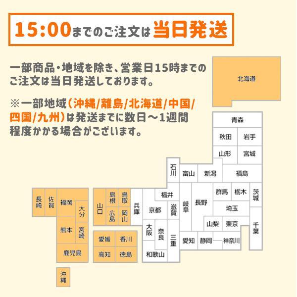 ゲーミングチェア  オフィスチェア  E-WIN FL-BG1A 黒グレー パソコンチェア  オフィス リクライニング 腰痛 座り 心地 高品質 ランバーサポート  寝れる|bbest|10