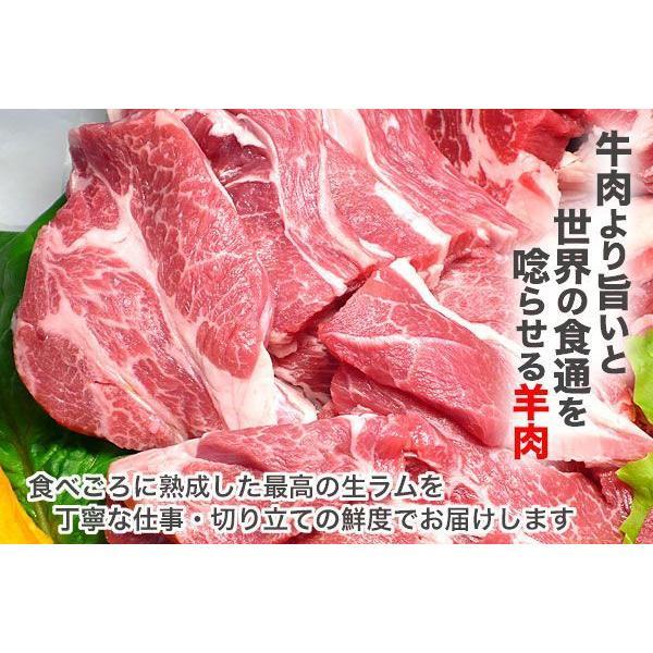 焼き肉 ジンギスカン 生ラム 肩ロース 500g 冷蔵チルド・真空パック 自家製タレ付属 (BBQ バーべキュー)焼肉|bbq|02