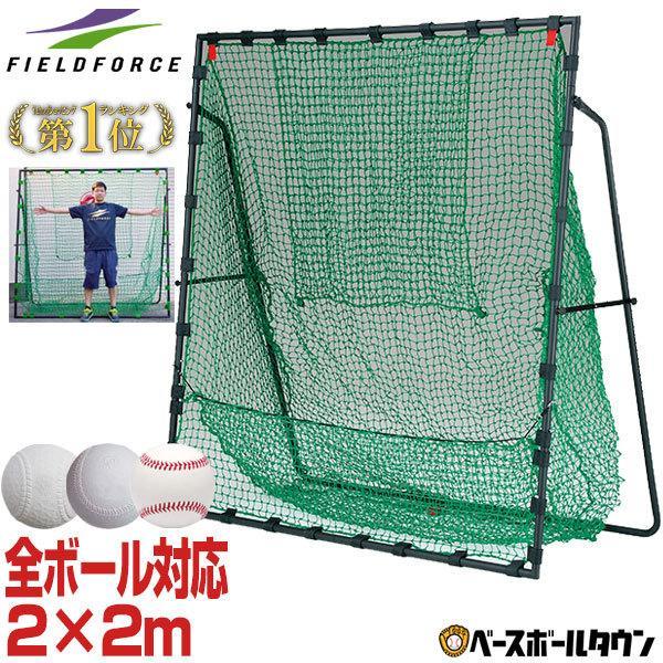 野球 バッティングネット 着後レビューで 送料無料 硬式 軟式 ソフト対応 フィールドフォース ターゲット いつでも送料無料 収納バッグ付き FBN-2020H2 2×2m