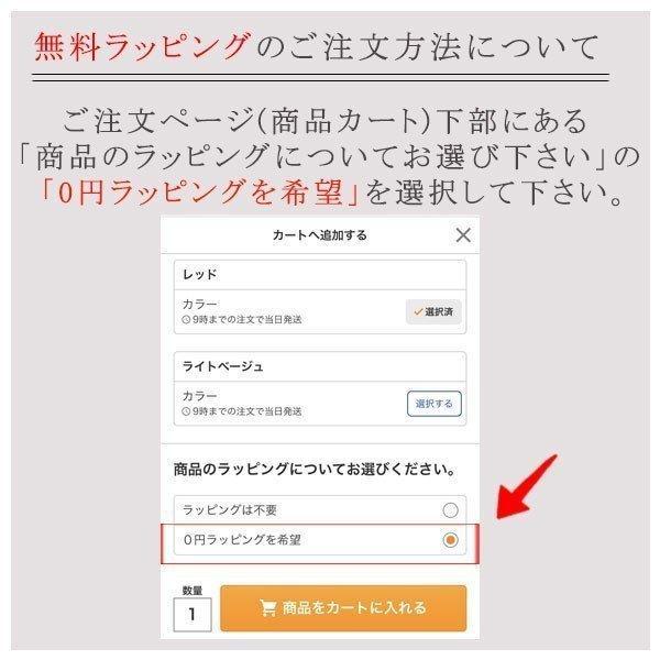ポケットティッシュケース ティッシュカバー ポーチ 小さめ 小物入れ プレゼント シンプル カラー bcolors 09