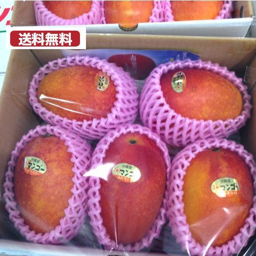 マンゴー 入荷しました 沖縄産マンゴー 6個から5個 激安通販専門店 2キロ近くあります 御中元 完熟マンゴー 南国果物 未使用 全国送料無料 お中元