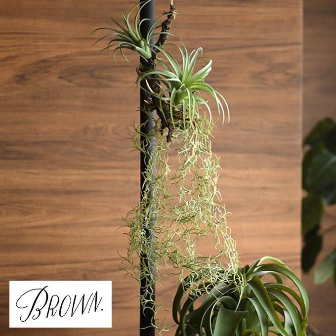 人気海外一番 人工観葉植物 造花 フェイクグリーン 観葉植物 感謝価格 Brown. アレンジメント 着生 ブラウン 64