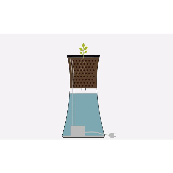 水耕栽培 キット Botanium ボタニアム 自動散水式プランター  栽培キット かわいい おしゃれ 初心者 室内 簡単 ハーブ beadsmania-shop 07