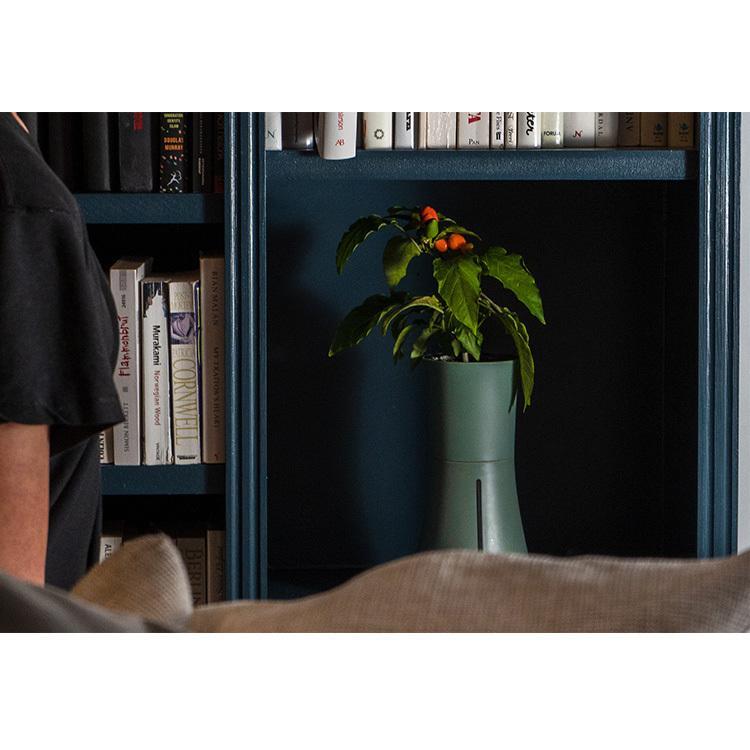 水耕栽培 キット Botanium ボタニアム 自動散水式プランター  栽培キット かわいい おしゃれ 初心者 室内 簡単 ハーブ beadsmania-shop 08