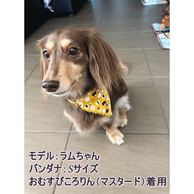 【オプション】バンダナを追加  犬用首輪|beans-factory|13