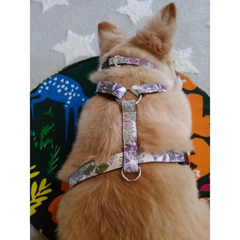 【オプション】首輪をダブルH型ハーネスに変更  犬用ハーネス  小型犬  中型犬  15mm/20mm幅  フルオーダーメイド|beans-factory|12