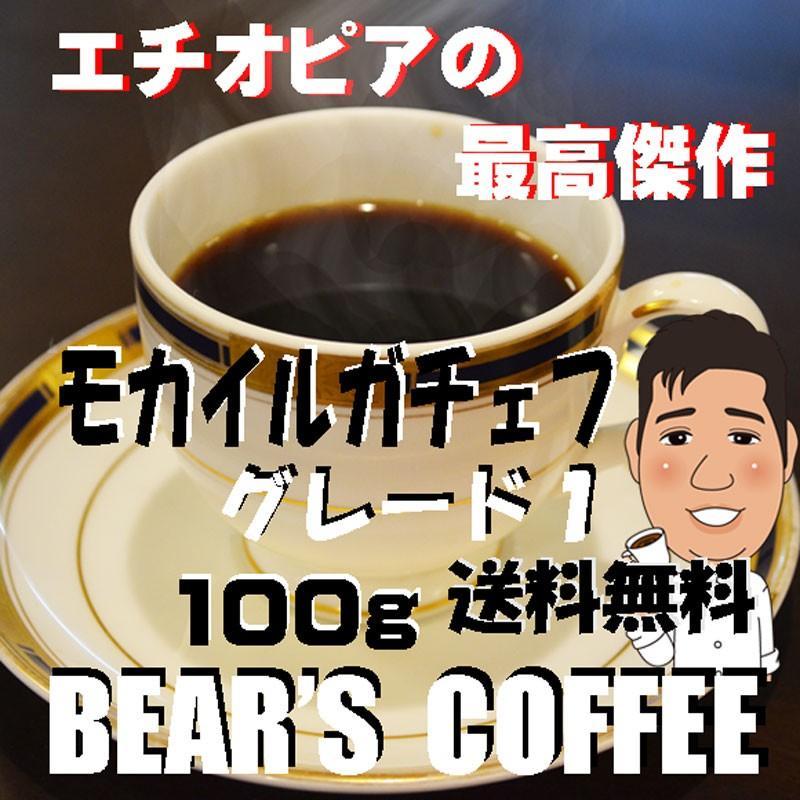 モカ コーヒー豆モカイルガチェフ 100g 送料無料コーヒー豆 コーヒーお試し サンプルコーヒー コーヒーサンプル bearscoffee