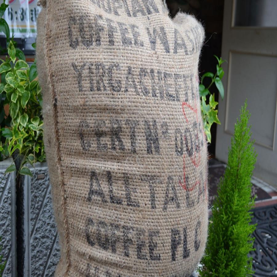 モカ コーヒー豆モカイルガチェフ 100g 送料無料コーヒー豆 コーヒーお試し サンプルコーヒー コーヒーサンプル bearscoffee 02