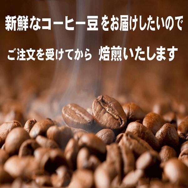 モカ コーヒー豆モカイルガチェフ 100g 送料無料コーヒー豆 コーヒーお試し サンプルコーヒー コーヒーサンプル bearscoffee 05