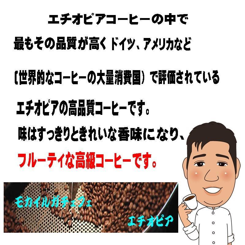 モカ コーヒー豆モカイルガチェフ 100g 送料無料コーヒー豆 コーヒーお試し サンプルコーヒー コーヒーサンプル bearscoffee 06