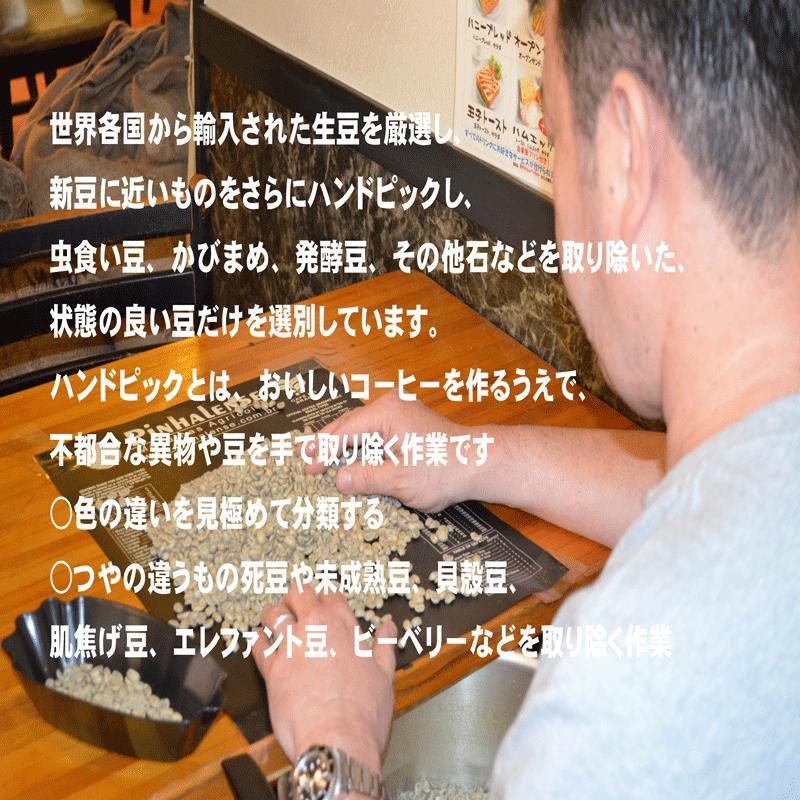 モカ コーヒー豆モカイルガチェフ 100g 送料無料コーヒー豆 コーヒーお試し サンプルコーヒー コーヒーサンプル bearscoffee 07