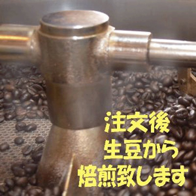 モカ コーヒー豆モカイルガチェフ 100g 送料無料コーヒー豆 コーヒーお試し サンプルコーヒー コーヒーサンプル bearscoffee 08