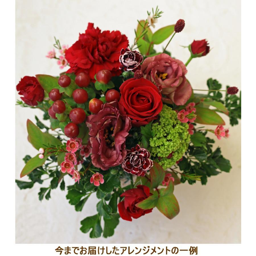 花 ギフト プレゼント 誕生日 結婚 記念日 お見舞い 開店 新築 還暦 お祝い 季節の花 フラワー アレンジメント レッド 画像配信 be-r|beautiful-boy