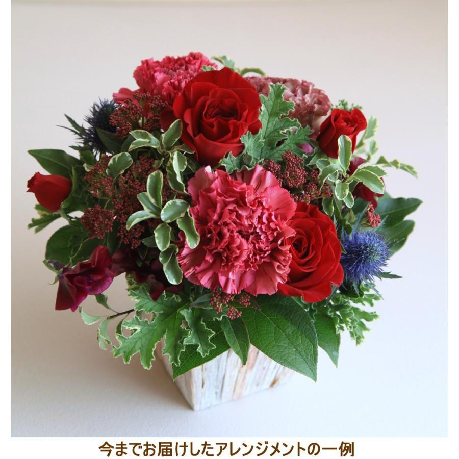 花 ギフト プレゼント 誕生日 結婚 記念日 お見舞い 開店 新築 還暦 お祝い 季節の花 フラワー アレンジメント レッド 画像配信 be-r|beautiful-boy|05