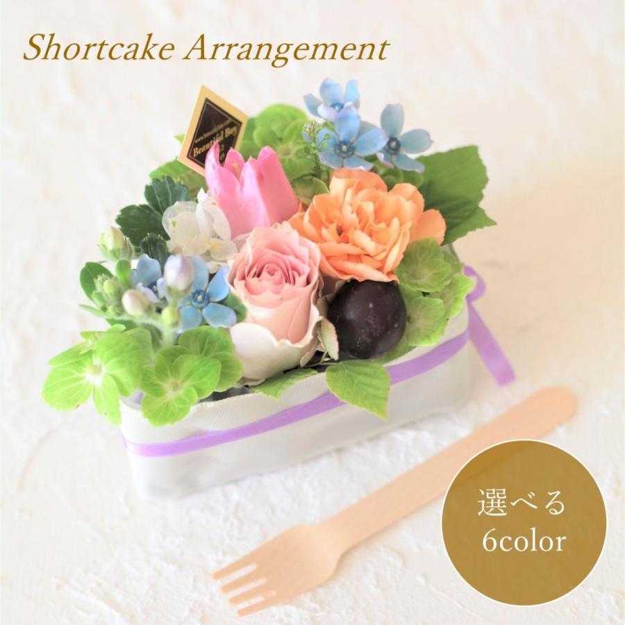花 ギフト プレゼント 誕生日 花を贈る 画像 フラワーアレンジメント お祝い お見舞い 記念日 出産祝い 送料無料 おしゃれ sh+|beautiful-boy