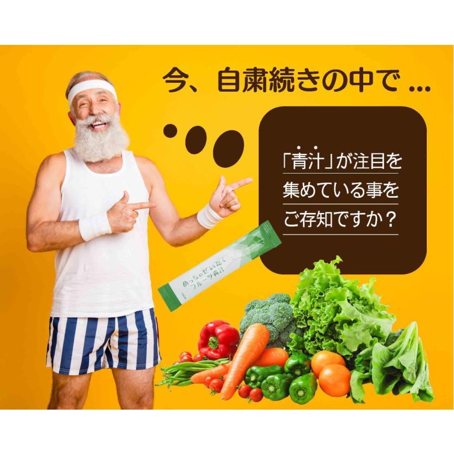 正規販売店 めっちゃぜいたくフルーツ青汁 明日葉 甘藷若葉 大麦若葉使用 めっちゃ贅沢フルーツ青汁 乳酸菌配合青汁 ダイエット 3個セット|beautycrea|04