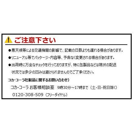 カナダドライ ジンジャーエール 500mlPET×24本 コカ・コーラ直送商品以外と 同梱不可 【D】【サイズE】 beautyhair 02